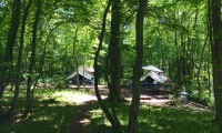 The Secret Campsite Wild Boar Wood