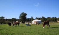 Glamping West Midlands
