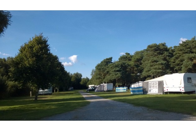 Grass electric pitches surrounded by Wareham Forest