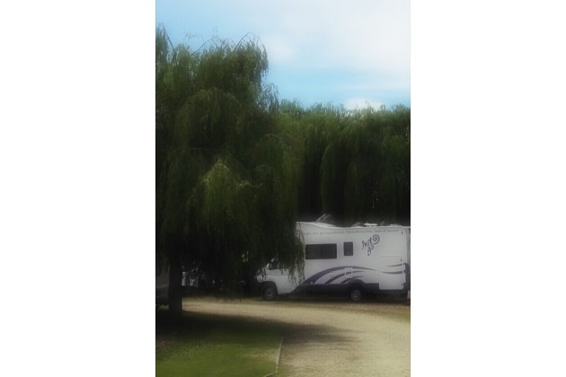 Photo of The Willows Caravan Park