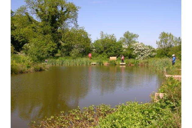 Coarse Fishing Lake