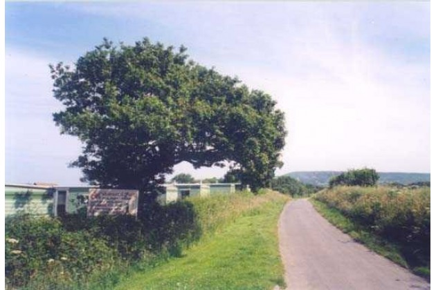 Photo of Middlewood Farm Holiday Park