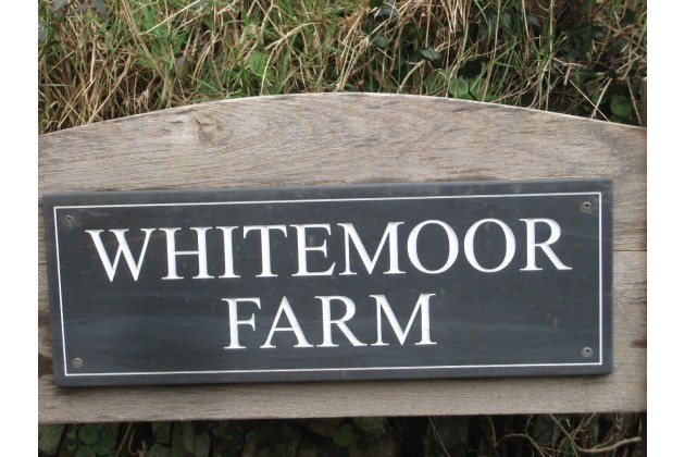 Photo of Whitemoor Camping