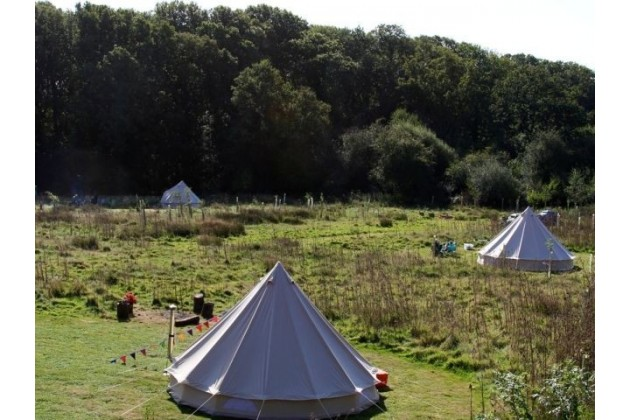 Pretty tents in the Meadow