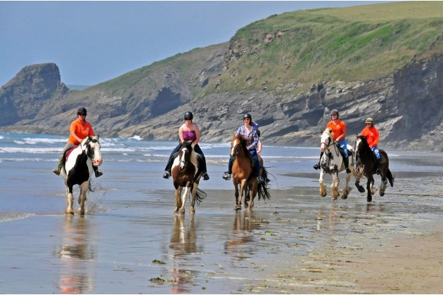 Nolton Horses on Druidstone beach