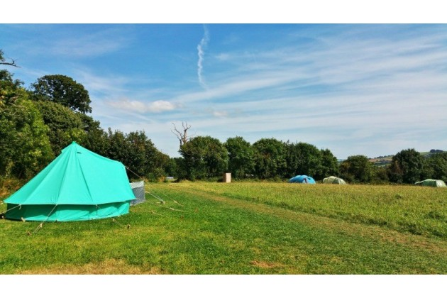 Pitch where you want with plenty of space for everyone in our camping meadow