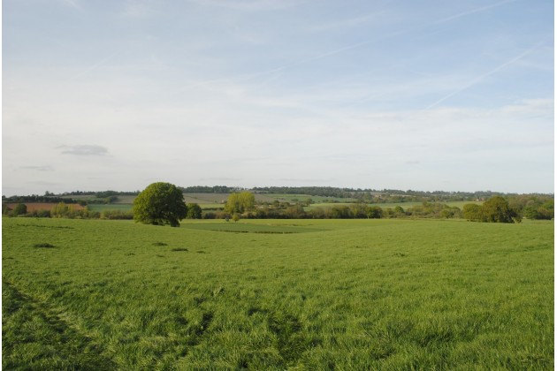 View from Bluebell Wood (campsite 2)
