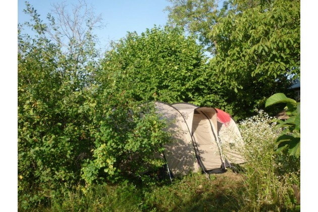 Enjoy nature on our small eco campsite!