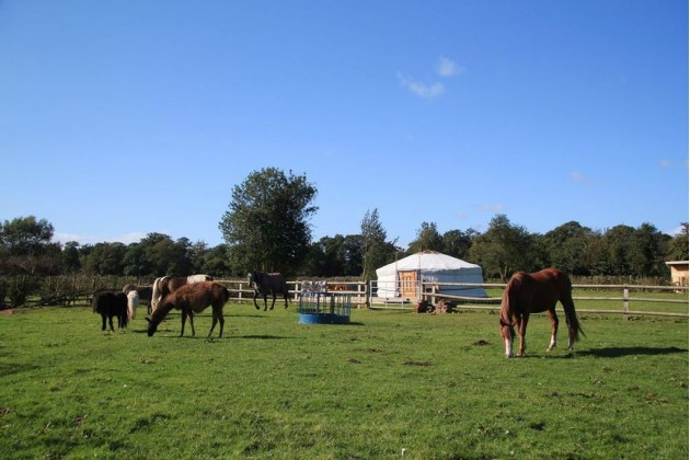 Photo of Glamping West Midlands