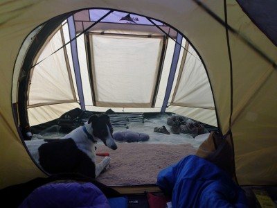 Ok come on I hear you say it canu0027t be the perfect tent. Well youu0027re almost right. No tent is perfect for every situation and that is also true of the ... & Vango AirBeam® Genesis 300